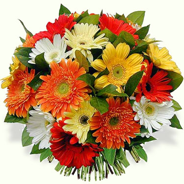 Estas flores são para você, mulher!